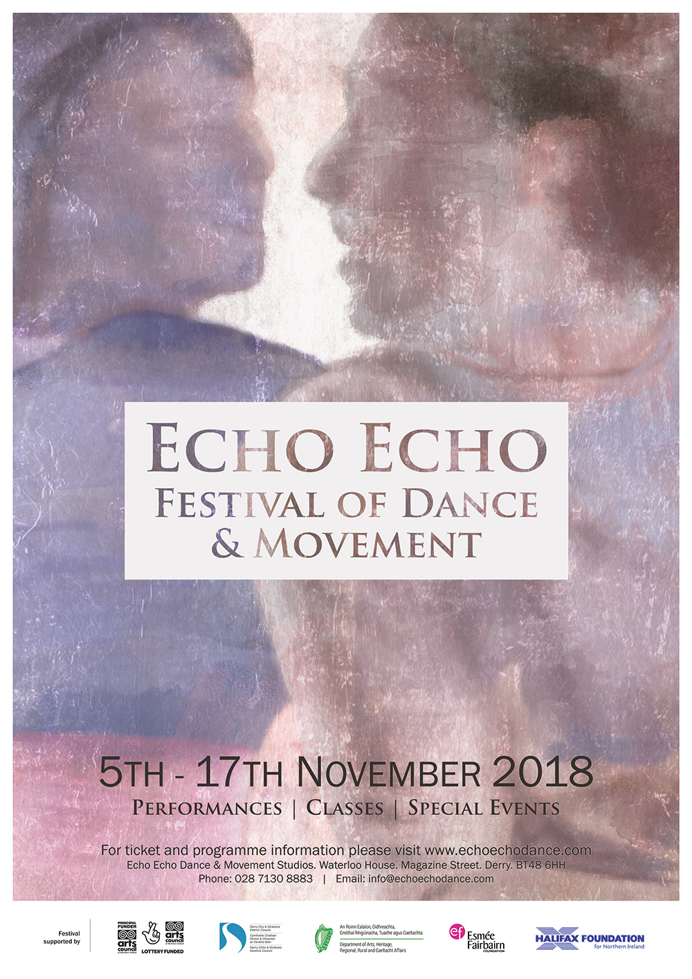 Echo Echo Festival 2018 artwork by zoocreative